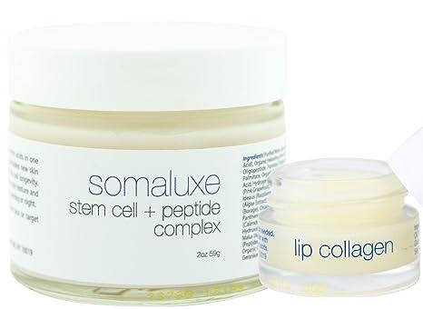 Amazon.com: Colágeno + células madre Facial Kit: células ...