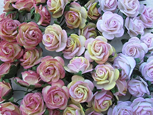 60 pcs Rose 20mm Mixed Pink Mulberry Paper Flowers handmade craft project cardmaking Floral Valentine
