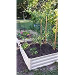 Metal Raised Garden Bed Kit - Elevated Planter Box For Growing Herbs, Vegetables, Flowers, and Succulents (2) 6 Painted Metal Raised Garden Bed