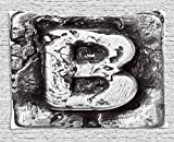 THndjsh Letter B Tapestry, Steel Aged B with Toned Cracks and Distressed Effects Ceramic Inspired Print, Wall Hanging for Bedroom Living Room Dorm, 80 W X 60 L Inches, Silver Grey