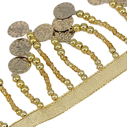 5yard (Coin Trim For Costumes)
