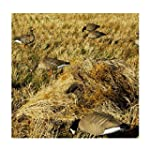 Avery Killerweed Layout Blind Kit Golden Harvest 47305
