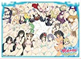 Senran Kagura Peach Beach Splash Group Shot Trading Card Game Character Sleeve Collectible Anime Art EN545