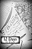 12 Days Special Edition: Day Eight, E. J. Flynn, 1494861585