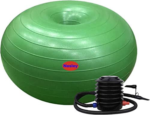 Nesley Inflatable Donut Ball