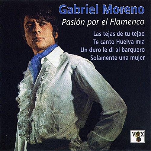 Pasión Por El Flamenco