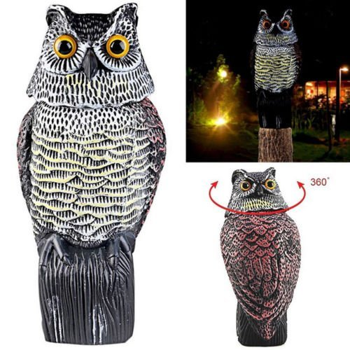 Amyove Hunting Bait Large Realistic Owl Decoy Rotating Head Weed Pest Control Crow Scarecrow (Decoy Owl Head)