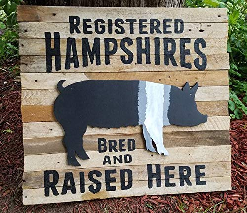 BobSign Reclaimed Wood Sign Hampshire Pig Hand Painted Sign Two Dimensional bb 670887