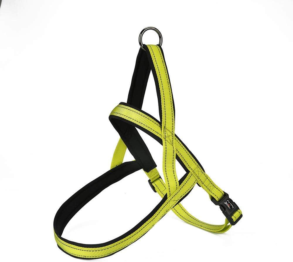 DLFALG Correas De Pecho De Perros Medianos Y Grandes Cuerda De Tracción Correa De Perro Mascota Cordón De Nylon Entrenamiento Al Aire Libre Collar De Cuello Collie