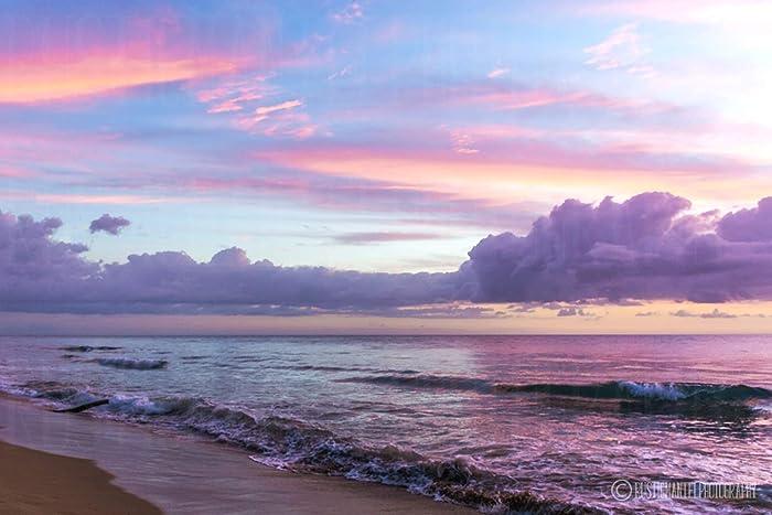 Amazoncom Purple Beach Scene Photography Art Photograph Print Home