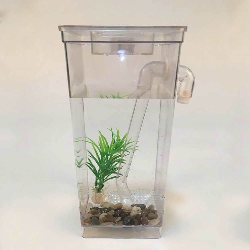 Amazon.com : Ragdoll50 Desktop Aquarium Mini Self-cleaning Grass Fish Tank Magic Fish Tank Automatic Decontamination Tank(Clear) : Pet Supplies