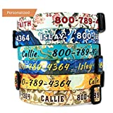 Buttonsmith Art Dog Collar - Fadeproof Permanently Bonded Printing, Military Grade Rustproof Buckle, Resistant to Odors & Mildew, Choice of 6 Sizes, Made in The USA