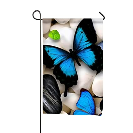 Amazon com : Beautiful Butterflies Blue Double-Sided Printed