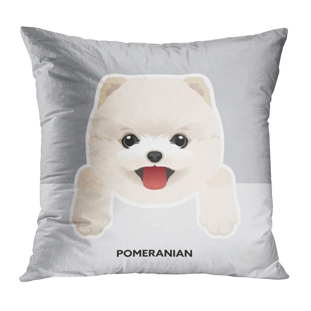 White Animal Portrait of Pomeranian Puppy Dog Breed Cute Decorative Pillow Case Home Decor Square 18x18 Inches Pillowcase DeerLiKang