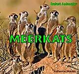 Meerkats, Katherine Walden, 1435826914