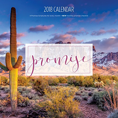Red Dove Design 2018 Christian Calendar (Promise Scriptures/Bible verses/Planner/Photo Wall Calendar)