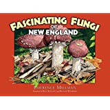 Fascinating Fungi of New England