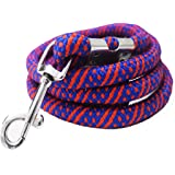 Pawzone Strong Rope Leash for Big Dogs with Hook (Colour May Vary)