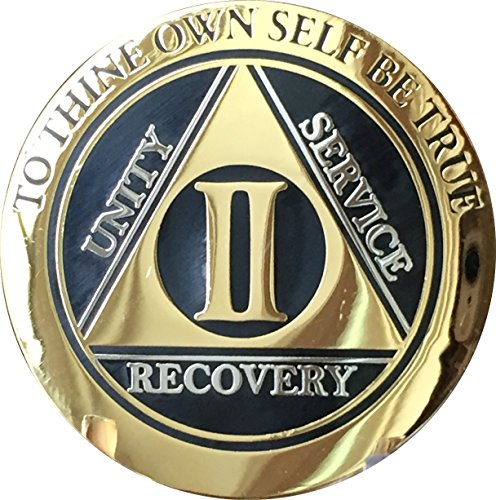 Recoverychip 2 Year AA Medallion Elegant Black Gold Silver Bi-Plated Alcoholics Anonymous Chip