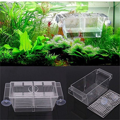 large-fish-breeding-boxes-double-guppies-hatching-incubator-isolation-acrylic-mini-aquarium-tanks-du