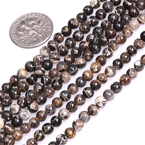 Turritella Agate Beads for Jewelry Making Natural Gemstone Semi Precious 4mm Round Dark Brown 15