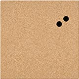Board Dudes 17'' x 17'' Unframed Magnetic Canvas Cork Board (CYF06)