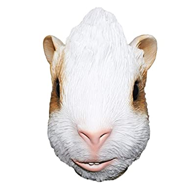 Hamster Latex