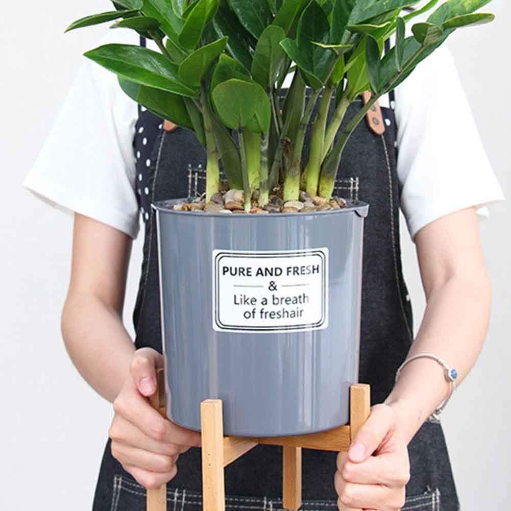 S nicht null S Garten modern Heimdekoration Wie abgebildet Namya Pflanzenst/änder Holz f/ür drinnen und drau/ßen stehend Blumentopf-Halter Bonsai Regal wackelfrei f/ür B/üro