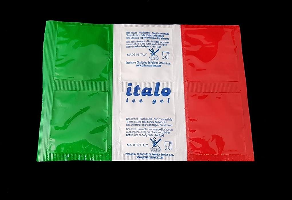 Ghiaccio sintetico in confezione da 25 fogli da 6 cellette colore italia per spedire cibo alimenti freschi