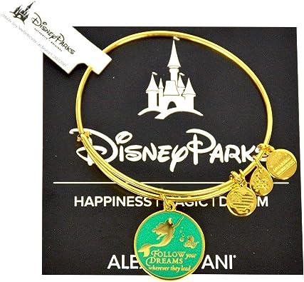 Parks Alex and Ani Little Mermaid Princess Ariel Enamel Follow Your Dreams Silver