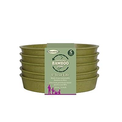 """TIERRA GARDEN - HAXNICKS 6"""" Green Bamboo Saucer (5-Pack) : Garden & Outdoor"""