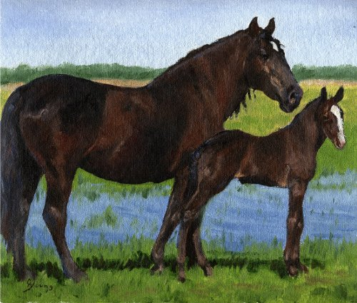 (Percheron Mare And Foal Draft Horse Matted Art Print - 5 in x 7 in Design - 8 in x 10 in Matted)
