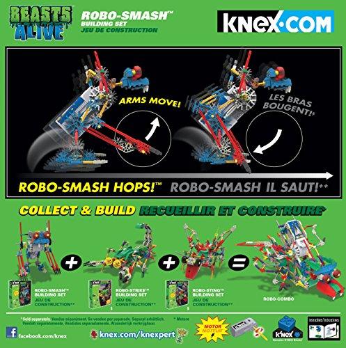 robo alive lizard battery instructions