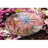Evergreen Enterprises EG2GB058 Bird Bath Glass Dragonfly