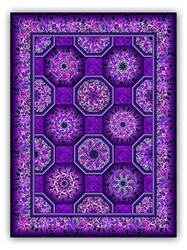 Kaleidoscope Purples Quilt Kit with Backing - by Jason Yenter for in The Beginning Fabrics - Dreamscapes II