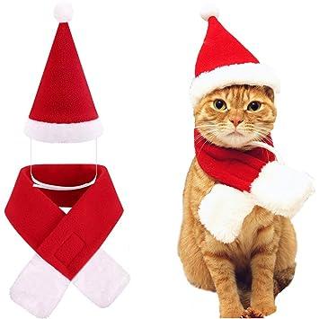 Amazon.com: Sombrero de Papá Noel para perro, gato, mascota ...