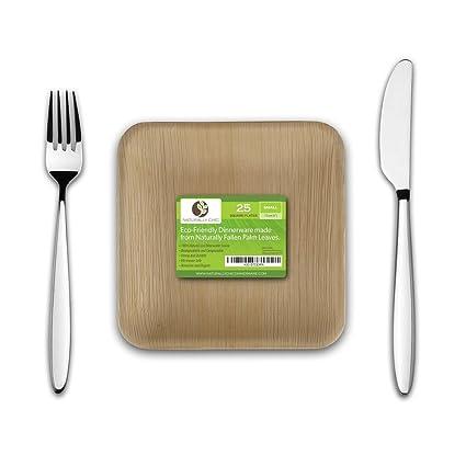 6\u0026quot; Square Disposable Palm Leaf Paper Plates Compostable Biodegradable Heavy Duty Dinner Party  sc 1 st  Amazon.com & Amazon.com: 6\
