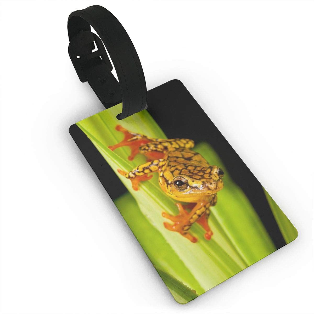 Frog Baggage Tag For Travel Tags Accessories 2 Pack Luggage Tags