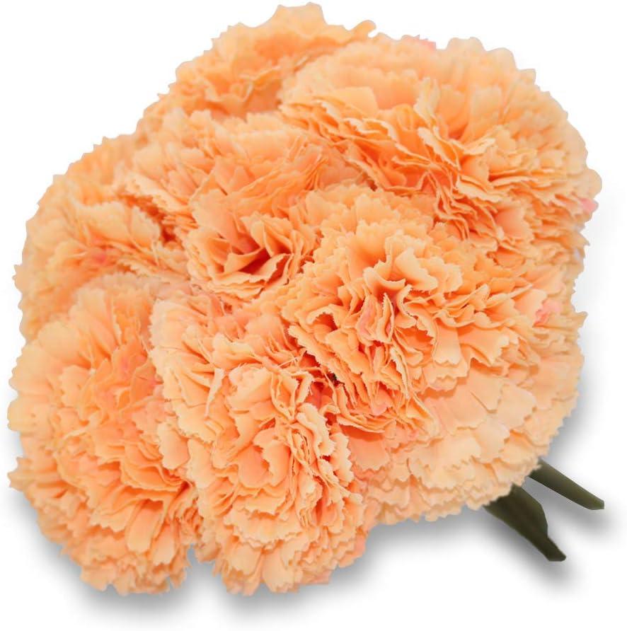 D/écoration de f/ête de Jardin de Bouquet de Mariage HELA 23cm Oeillet de Fleur Artificielle 8pcs en 1 Champagne Rose