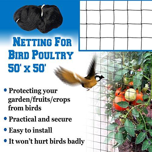 BenefitUSA Bird Netting 50' X 50' Net For Bird Poultry Avaiary Game Pens Black Mesh