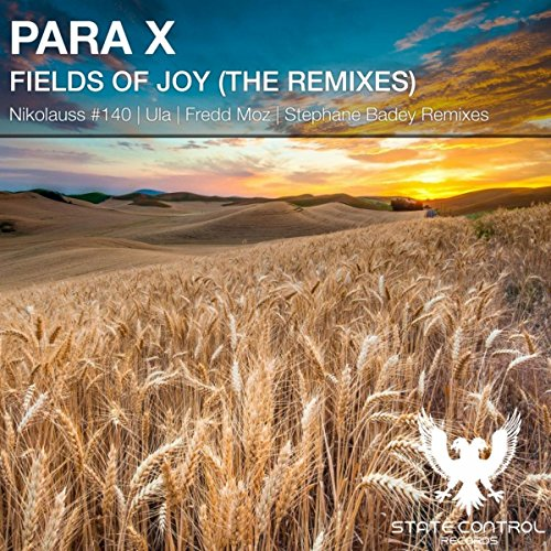 Fields Of Joy (Nikolauss #140 Remix) by Para X on Amazon ...