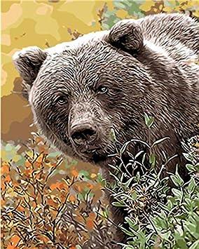 Ujgioy Pintura Por Números Sin Marco Natural Animal Oso Pardo