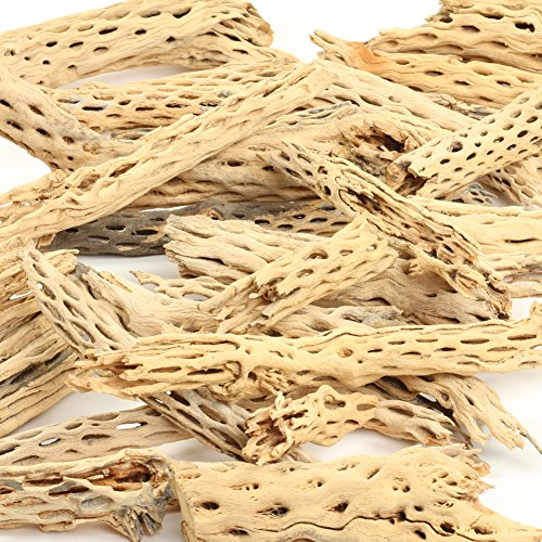 Koyal Wholesale Cholla Wood Aquarium Branches, Airplants Decor, Reptile Perch, Natural Home Decoration, Chew Toy Dried Cactus Wood (2-Pound)