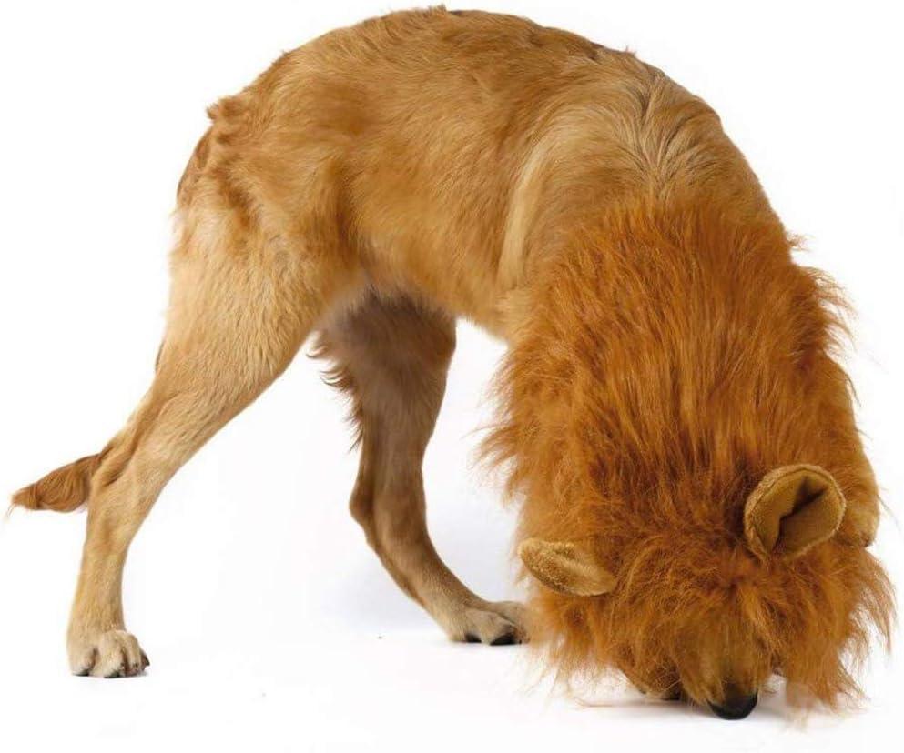 Rhww LeóN Mane para Perro Grande Mediano con Orejas, Disfraz De ...