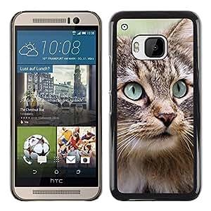 PC/Aluminum Funda Carcasa protectora para HTC One M9 Maine Coon Norwegian Forest Cat / JUSTGO PHONE PROTECTOR