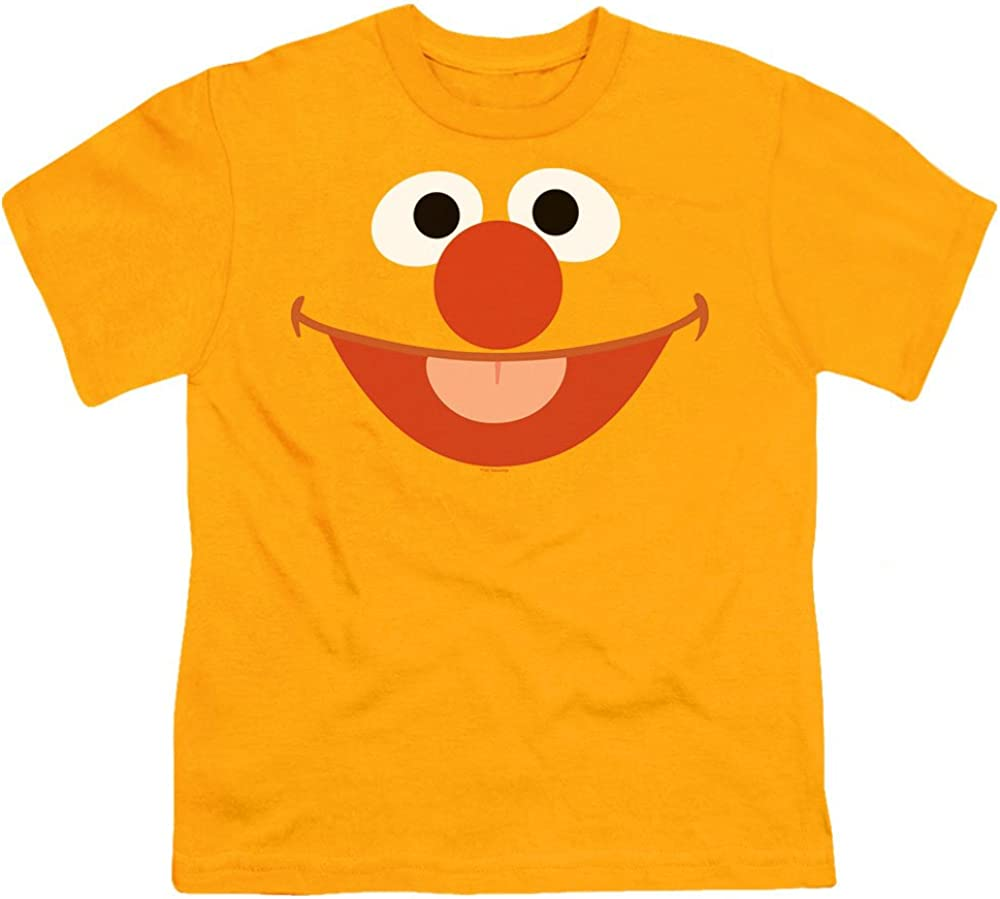 Sesame Street Character Face Youth T Shirt /& Stickers