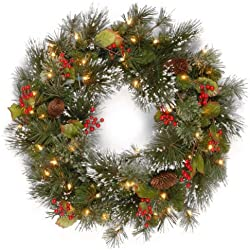 National Tree 24 Inch Wintry Pine Wreath with Cones, Red Berries, Snowflakes and 50 Battery Operated White LED Lights (WP1-300L-24W-B1)