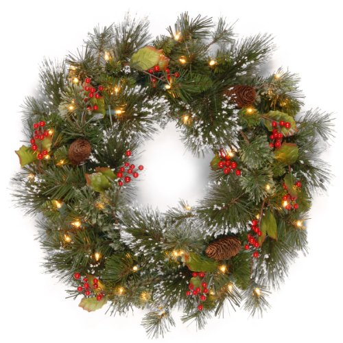 Happy Holidays Wreath - National Tree 24 Inch Wintry Pine Wreath with Cones, Red Berries, Snowflakes and 50 Battery Operated White LED Lights (WP1-300L-24W-B1)