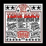 Ernie Ball Tenor Banjo Medium Stainless Steel Loop End Set, .010 - .030