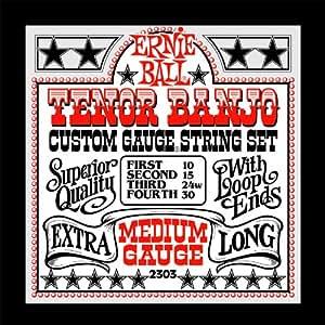 Ernie Ball Tenor Banjo Medium Stainless Steel Loop End Set.010 - .030